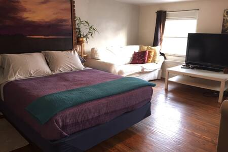 Large Cozy & Private! BRKLN HEIGHTS