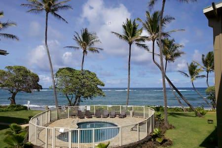 2bd Beachfront Ocean View + Kitchen - Kapaa
