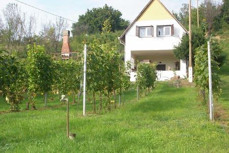 Szőlőskert Vendégház - Baj - Leilighet