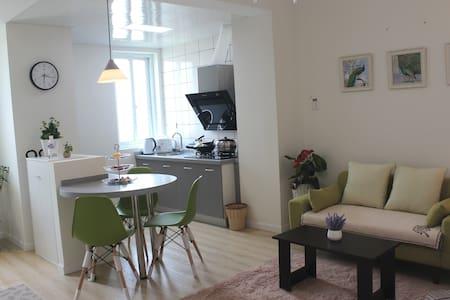 西湖文化广场地铁口150米2室1厅精装电梯公寓 - Wohnung