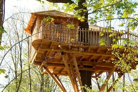 Cabane dans les Arbres Escapade - Raray - Boomhut