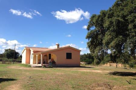 Bilocale vicino S.Teodoro - House