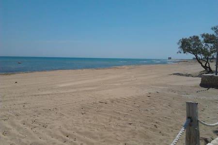Trilocale a 50 metri dalla spiaggia - Idrovore - Appartement