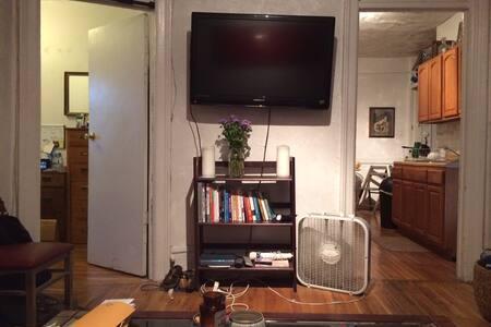 Sunny, cozy room in S. Williamsburg - Brooklyn - Apartment