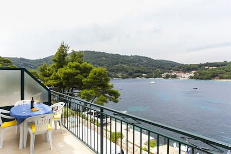 Studio apartment ( 2+1) Mljet - Apartment