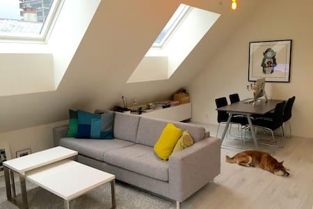 Nice room in modern flat. Central. - Lägenhet