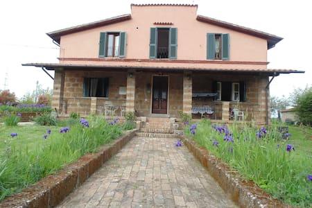 oasi di pace in terra  etrusca - Bed & Breakfast
