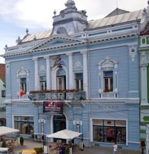 Nice old style house. - Târgu Secuiesc - House