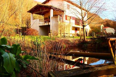 maison de caractère dans les bois - Hus