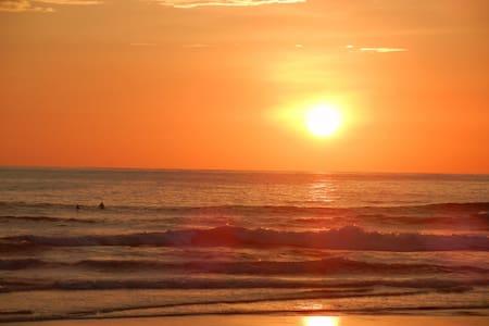 Beach Front, Tropical Paradise!