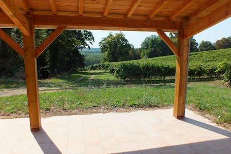 Maison au calme en pleine vigne ! - Talo