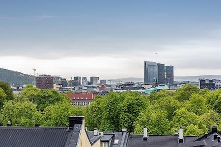 Grünerløkka - Sunny Balcony - View!