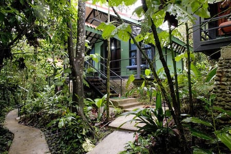 Rainforest Lodge - Bungalow