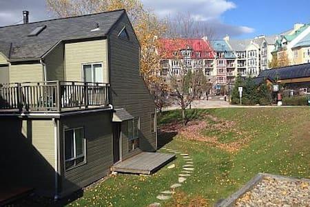 One Bdrm condo, parking & wifi - Appartement