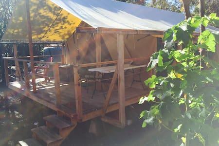 Shared Ohana Cimarron platform tent - Volcano - Zelt