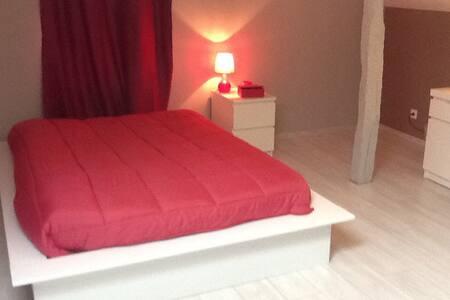 Chambre 40 m2 - Gavarret-sur-Aulouste - Huis