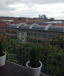 Uitzicht op Bonnefantenmuseum - Maastricht - Apartment