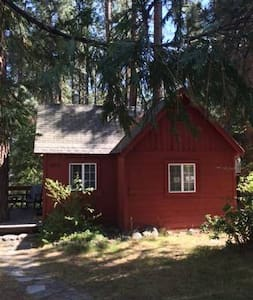 The Little Red Cabin