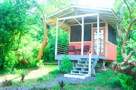 The screened in cabin has a double size bed, table, towels and bedding . There's a lanai with table and 2 chairs looking out towards the lush tropical garden of bananas, avocados and a variety of fruit trees and flowers.  A true tropical experience.