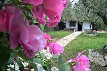 Villa charme Tenuta Montelibretti. - Montelibretti