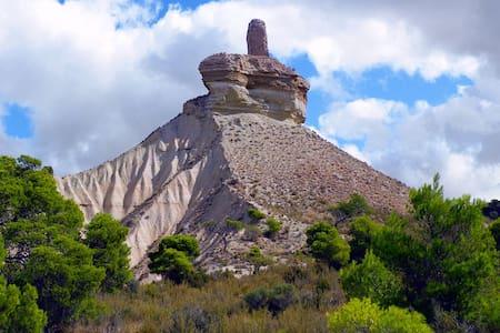 La Bardena Blanca II - Casa Rural - Talo