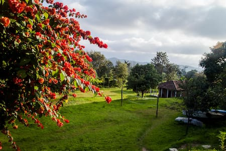 Thrilling Coorg @ the Adventure Camp - Bed & Breakfast