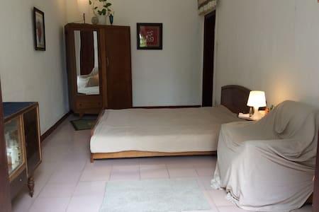 Garden House near Royal City Hanoi - Hanoi - Villa