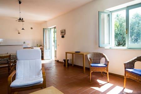 Il Casale di Cafaggio - Manciano - Apartemen