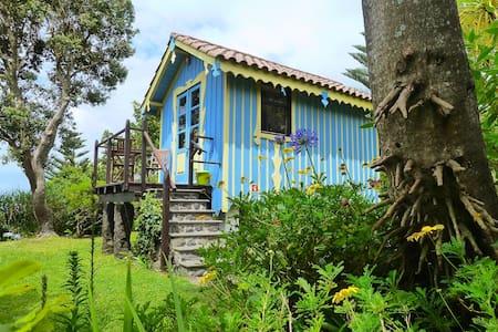Casa Arcadia. Açores, Saõ Miguel - São Miguel - Casa de campo
