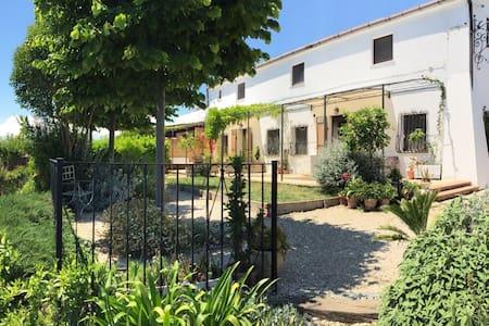 AGRADO Country House e B&B 2 - Apartment