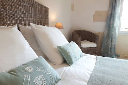 Double room in Bordeaux vineyards - Teuillac - Bed & Breakfast
