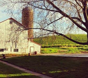 The Olive Branch Lane Farmacy - Casa