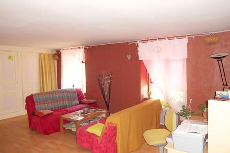Appartement centre ville d'Allanche - Allanche - Apartemen