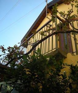 Lasmaris Bouquet - Myrofora's House - House