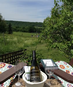 Vineyard View! - Wolfville - Appartamento
