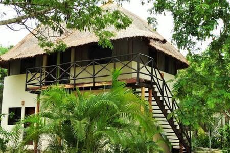 Casita Aire in Jungle Hideaway+pool