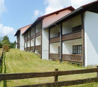1 Zimmer Wohnung im Kreuzbachhof - Haidmühle - Flat