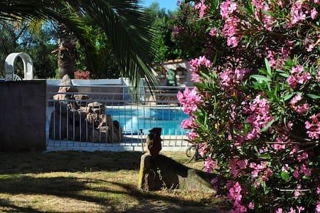 Mini villa 39m2 avec piscine et à 2 kms de la mer. - Ventiseri
