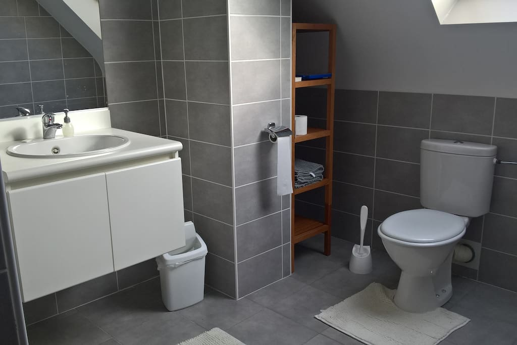 Bath room equipped with towels & utilities