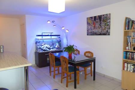 Bel appartement T3 - Nangy - Flat
