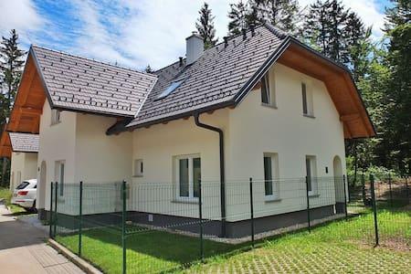 New large bright house at Bohinj lake - Ribčev Laz