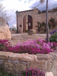 CASTELL PALAU DE TORREBESSES - Torrebesses  - Castell