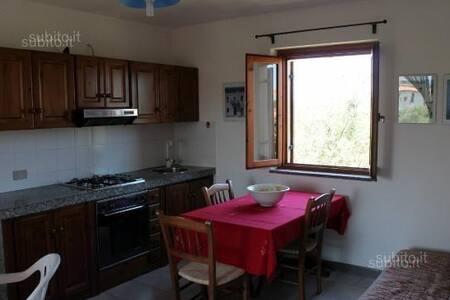 Appartamento San Teodoro Low Cost