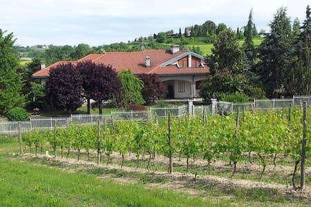Nel Monferrato - Vigneto Pardom - Bed & Breakfast