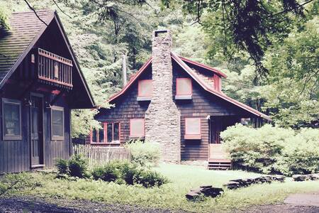 Arts & Crafts Cabin with Studio - Arkville