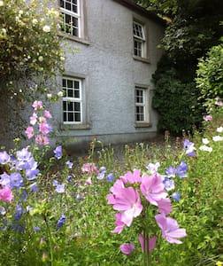 Charming Farm House - Drumconrath - House
