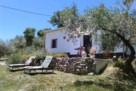 Casita in own olive grove with pool - Priego de Cordoba - Villa