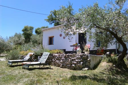 Casita in own olive grove with pool - Villa