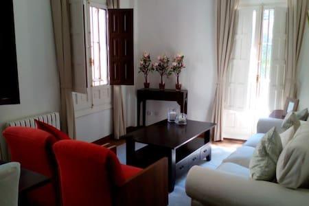 PISO AL PIE DE LA CATEDRAL 2DORM. - Wohnung