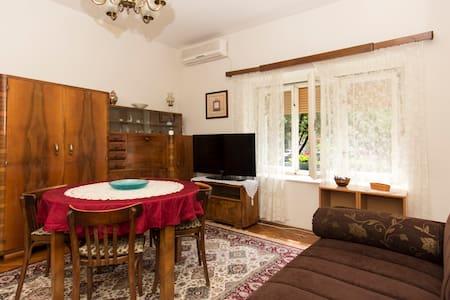 Vintage Parkview Apartment - Belgrad